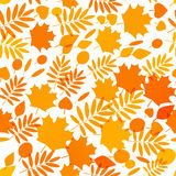 Seamless pattern with autumn leaves 10 Stock Images