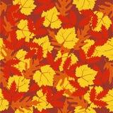 Seamless pattern autumn leaves vector illustration