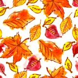 Seamless pattern with autumn leaves. Abstract watercolor seamless pattern with autumn leaves Stock Images