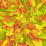 Seamless Pattern with Autumn Leaves. Autumnal Fall Royalty Free Stock Photo