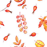 Seamless pattern with autumn leaves and berries Royalty Free Stock Photos