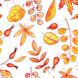 Seamless pattern with autumn leaves and berries Royalty Free Stock Photo