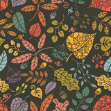 Seamless pattern.Autumn leaves and berryes. Royalty Free Stock Photo