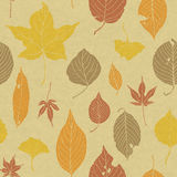 Seamless pattern of autumn leaves. On cardboard Royalty Free Stock Photography