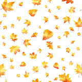 Seamless pattern of autumn leaves Stock Photography