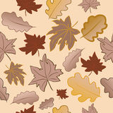 Seamless pattern with autumn leaves. stock photos
