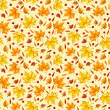 Seamless pattern with autumn leaves. Royalty Free Stock Images