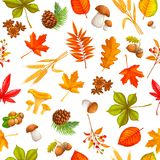 Seamless pattern with autumn leaves. Maple, oak, elm, mushrooms, fir cones and autumn berries. vector illustration Vector Illustration