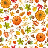 Seamless pattern with autumn leaves. Maple, pumpkin, oak, elm, mushrooms, fir cones and autumn berries. vector illustration stock illustration