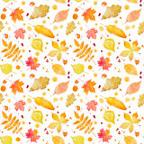 Seamless pattern with autumn leaves and splash. Watercolor paint Stock Images