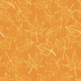 Seamless pattern autumn leaves Royalty Free Stock Images