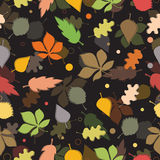 Seamless pattern of autumn leaves. Various leaves Royalty Free Stock Photos