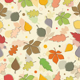 Seamless pattern of autumn leaves. Various leaves Stock Photography