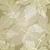 Seamless pattern with autumn leaves. Vector, EPS10. Stock Images