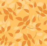 Seamless pattern with autumn leaves. Vector illust Royalty Free Stock Image