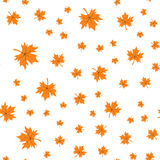 Seamless pattern of autumn leaves. Vector illustration of maple leaves Stock Photography
