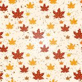 Seamless pattern of autumn leaves. Vector illustration of maple leaves. Eps 10 Royalty Free Stock Photos