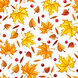 Seamless pattern with autumn leaves. Vector illustration. Royalty Free Stock Photography