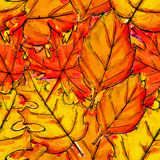 Seamless Pattern of Autumn Leaves Watercolor Overlap. Art Stock Images