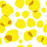 Seamless pattern of autumn leaves on the white Royalty Free Stock Photo