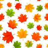 Seamless pattern with autumn leaves Royalty Free Stock Photo