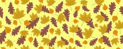 Seamless pattern with autumn leaves on a yellow background. Border. It can be used for packing of gifts, tiles fabrics backgrounds. Sample for the websites Stock Photography