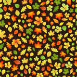 Seamless pattern of autumn leaves Royalty Free Stock Photo