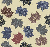 Seamless pattern with autumn leaves. For your designs Stock Photos