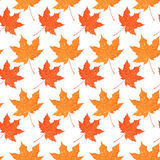 Seamless pattern with autumn maple foliage. Creative vector illustration Royalty Free Stock Photo