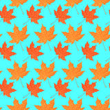 Seamless pattern with autumn maple foliage. Creative vector illustration Stock Image