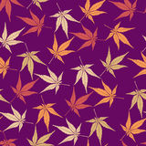 Seamless pattern from autumn maple leaves Stock Images