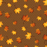 Seamless pattern. Autumn maple leaves on the knitted background Royalty Free Stock Photo