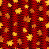 Seamless pattern. Autumn maple leaves on the knitted background Royalty Free Stock Images