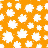Seamless pattern with autumn maple leaves 4 Stock Photo