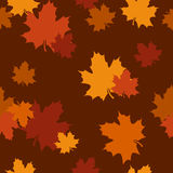 Seamless pattern with autumn maple leaves. Vector Stock Photos