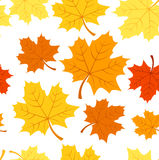 Seamless pattern with autumn maple leaves. Vector. Seamless pattern with autumn maple leaves of various colors on orange background vector illustration