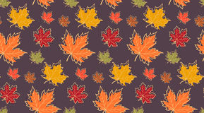 Seamless pattern with autumn maple leaves Stock Photo