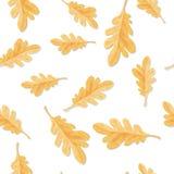 Seamless Pattern with Autumn Oak Leaves Isolated. Seamless pattern with oak leaves isolated. Fallen leaf of oak tree endless texture. Autumn season. Fall concept royalty free illustration