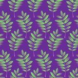Seamless pattern with autumn rowan foliage. Creative vector illustration in cartoon style. Seamless pattern with autumn rowan foliage. Creative vector Stock Photos