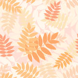 Seamless pattern with autumn rowan leaves. Vector Royalty Free Stock Image