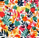 Seamless pattern of autumn Stock Photos