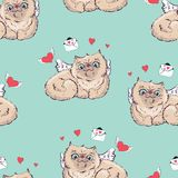 Seamless pattern background Angel cat vector illustration graphics. Stock Images