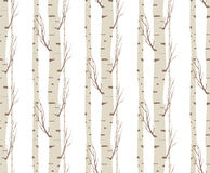 Seamless pattern, background with birch trees .textile, fabrics or wallpapers Stock Images