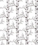 Seamless pattern. Background with birch wood trees over white background Stock Photography