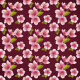 Seamless pattern background with cherry blossom Stock Images