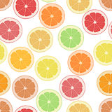 Seamless pattern background citrus. Wallpaper fruit. Vector tropical delicious. Sliced of lemon, orange and grapefruit. Stock Image