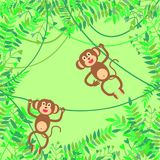 Vector illustration with jungle, branches and  smiling monkeys hanging on lians on green background. Stock Photo