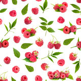 Seamless pattern background with fresh raspberry. Fresh raspberry and leaves isolated on white background. Seamless pattern Stock Photos