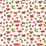 Seamless pattern background with fresh raspberry and leaves. Isolated on white background Stock Photography