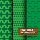 Seamless pattern background with green color Stock Images